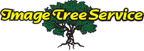 Image Tree Service, Inc